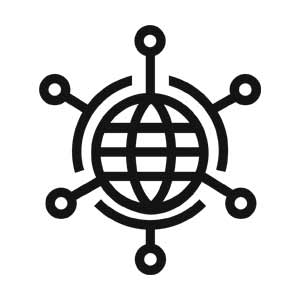 Grayscale Globe Network Icon